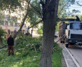 Мэр Екатеринбурга Высокинский приказал оперативно устранить последствия урагана
